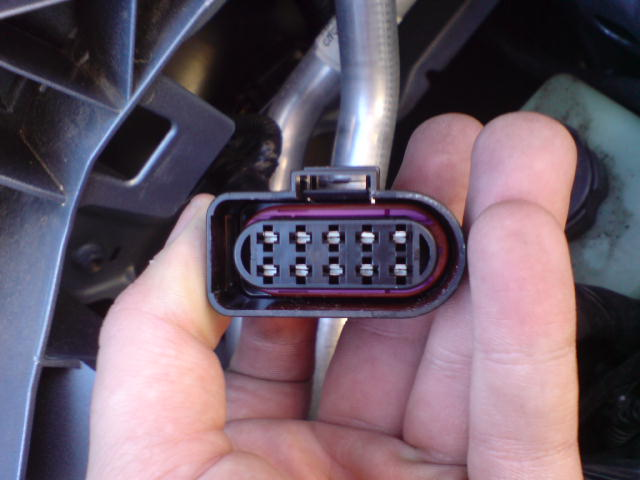 Ford Focus Headlight Connector Pins